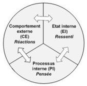 Niveaux logiques de la conscience : de l'action au sens | coaching | Scoop.it