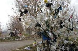 7,7 milliards de sacs en plastique utilisés chaque année en Algérie   Groupe CHIALI   Scoop.it