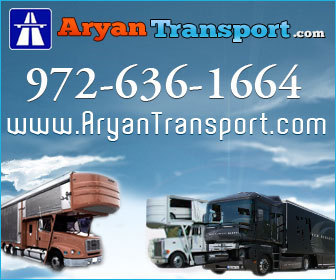 European Car Shipping | Best Transport Services | Aryan Transport | Aryan Auto Transport | Scoop.it