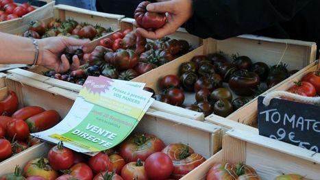 Alimentaire : les Français privilégient les produits locaux | Recherche partenariat CarrefourDanone E-Commerce | Scoop.it