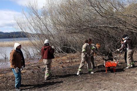 En Bariloche, el mercado laboral sigue muy atado al turismo - Lanacion.com (Argentina) | Trabajo y Ciudadanía | Scoop.it