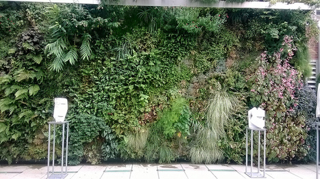 best outdoor living wall panel and planting grid reviews for 2014   for Home   Scoop.it