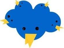 Digitale zelfmoord: Hoe moet je een twitter account deleten? | Mediawijsheid ed | Scoop.it