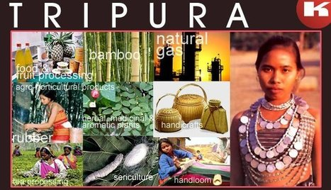 Report of the industrial developments and plans of Tripura | FIND NEW TARGETED CLIENTS | Scoop.it