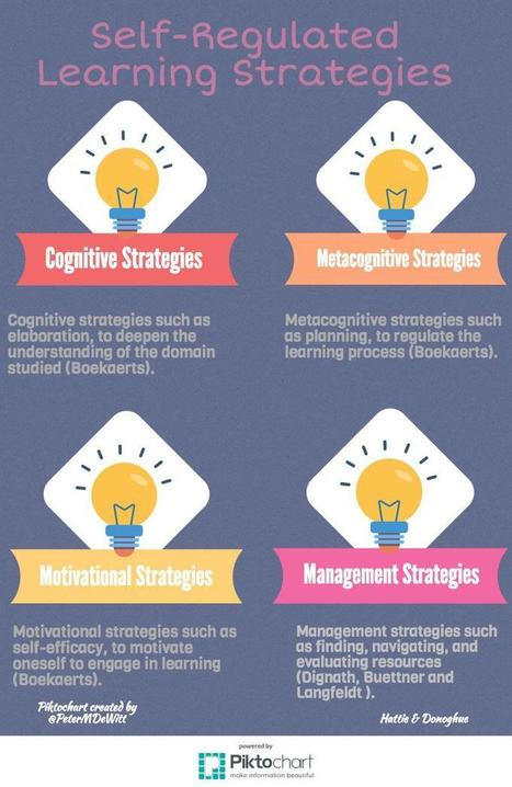 Learning Strategies, Not Learning Styles #education | Profes mode ON | Scoop.it