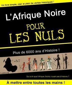 Livre: L'Afrique Noire - POUR LES NULS | Actions Panafricaines | Scoop.it