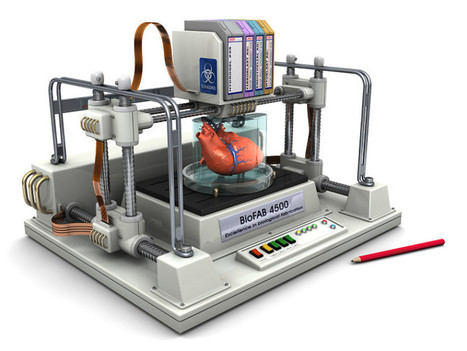 Bioprinting : une imprimante 3D pour concevoir des organes du corps humain, le projet audacieux du laboratoire communautaire BioCurious | Des usages et plus | Scoop.it