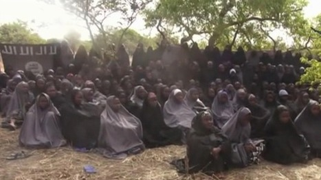 How environmental disaster is making Boko Haram violence worse | Sustain Our Earth | Scoop.it