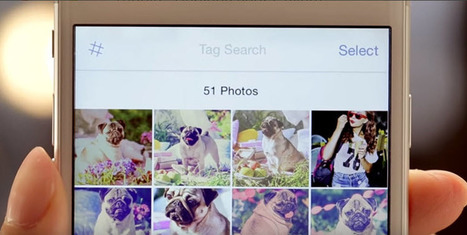 Taggle, para organizar nuestras fotografías con etiquetas desde el móvil | Aprendiendoaenseñar | Scoop.it