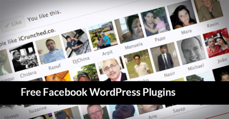 20 Top Free WordPress Facebook Plugins and Widgets of 2013 | Daily Design Notes | Scoop.it