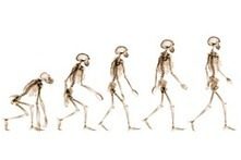 Public's Views on Human Evolution | Human Evolution | Scoop.it