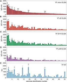 PLOS Pathogens: Dissection of Antibody Specificities Induced by Yellow Fever Vaccination | Virology and Bioinformatics from Virology.ca | Scoop.it