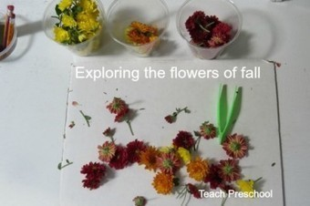 Exploring the colorful flowers of fall | Teach Preschool | Scoop.it