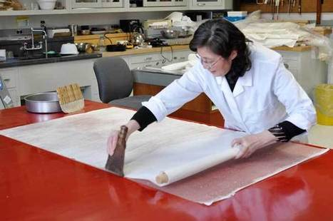 articles/Smithsonian Asian museums get m to fund Chinese conservation   Art   Scoop.it