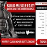 Muscle recovery support