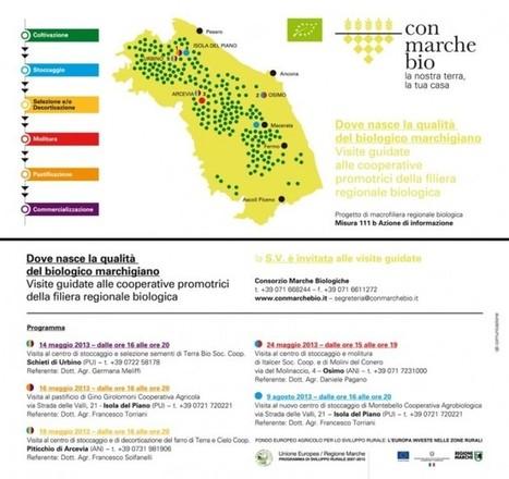 Consorzio Marche Biologiche organizza 'Dove nasce la qualità del biologico marchigiano' • Vivere Marche   Vini & tipicità della regione Marche   Scoop.it