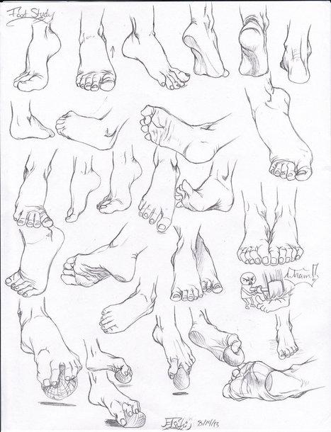 guida di riferimento al disegno del piede | Circolo d'Arti | Scoop.it