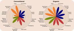 40 years of science: Organic ag key to feeding the world - WSU News | sustainablity | Scoop.it