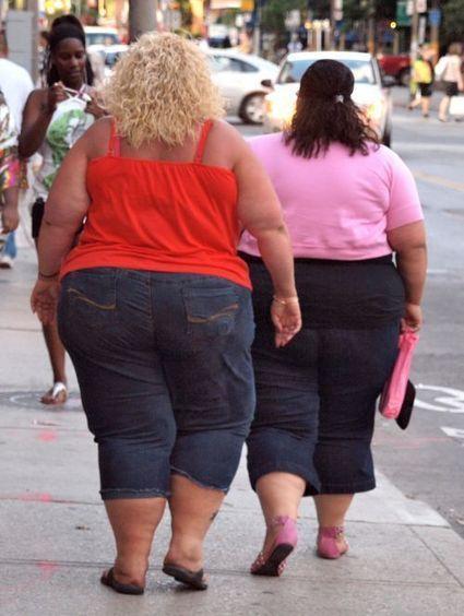 Obésité | SVT l'obésité 2014 | Scoop.it