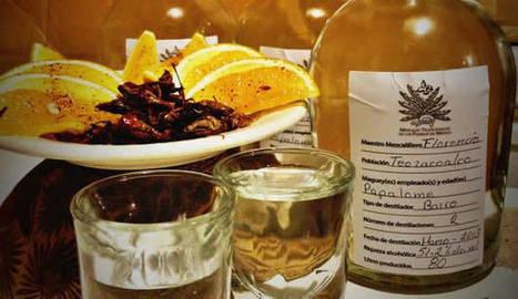 Guía para elegir un mezcal (7 puntos para conocer este destilado) | Food And Cook | Scoop.it