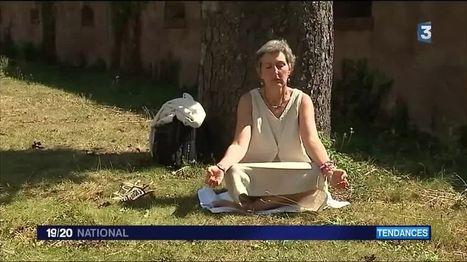 Santé : les bienfaits de la méditation | ACTU WEB MINDFULNESS | Scoop.it