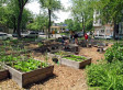 Volunteers Pitch In To Rebuild Vandalized Community Garden | Sending My Love | Scoop.it