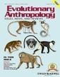 The Pre-Natufian Epipaleolithic: Long-term Behavioral Trends in the Levant - Maher - 2012 - Evolutionary Anthropology: Issues, News, and Reviews - Wiley Online Library | Archaeobotany and Domestication | Scoop.it