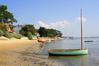 Week-end idyllique dans le bassin d'Arcachon, perle de la nature - Nature et Paysages | Le Bassin d'Arcachon | Scoop.it