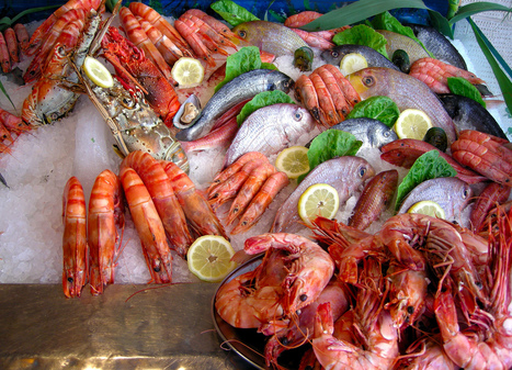 are you a sea food lover ? | travelling 2 Greece | Scoop.it