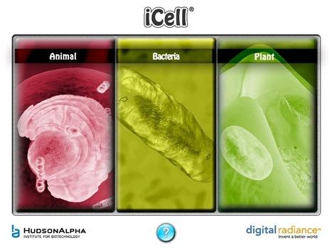 HudsonAlpha iCell Online | HudsonAlpha Institute for Biotechnology | Recursos Biología en Inglés | Scoop.it