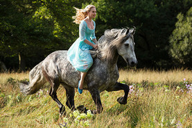 First Look: Lily James as 'Cinderella' in Kenneth Branagh's live-action movie - HitFix | Movies | Scoop.it