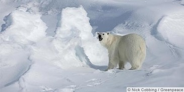 Is the Arctic really a geopolitical flashpoint of the future? | The Great Transition | Scoop.it