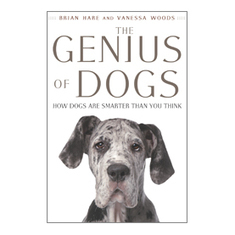 What Are Dogs Saying When They Bark? [Excerpt]: Scientific American | Radio Show Contents | Scoop.it