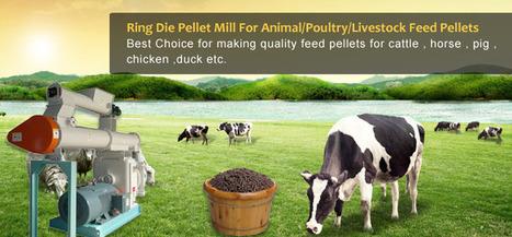 Feed Pellet Mill Manufacturer/Expert In Feed Pelletizing Solutions | Animal Feed | Scoop.it