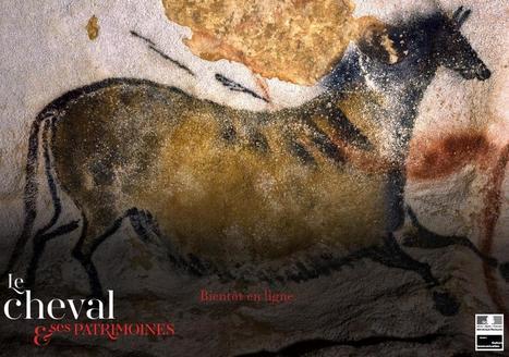 Le patrimoine équestre a son site internet | Patrimoine-en-blog | L'observateur du patrimoine | Scoop.it