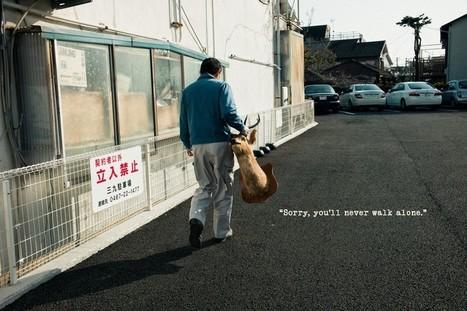 Project: Sorry, you'll never walk alone. | Shin Noguchi Photography | fotografia callejera | Scoop.it