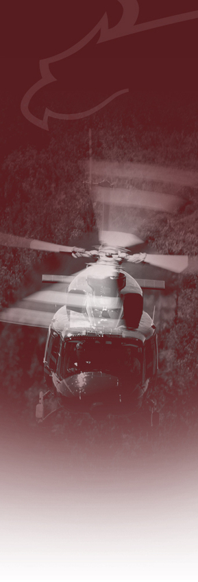 Tame expands role to become Avincis CEO | Vertical Magazine - The Pulse of the Helicopter Industry | Helicopters, Search and Rescue | Scoop.it