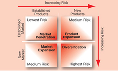Ansoff's Matrix - Achieving growth through product development | Organisations and the Business Environment | Scoop.it