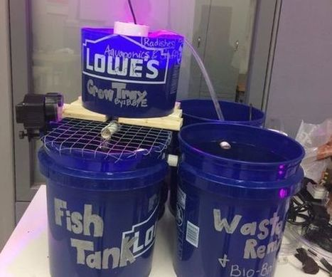 20-Gallon Aquaponics System with Arduino Monitoring | Raspberry Pi | Scoop.it