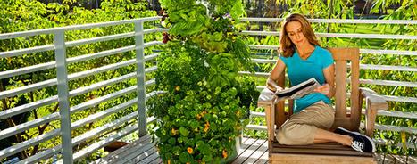 Aeroponic Garden, Vertical Garden   Tower Garden Vertical Garden   garden tower   Scoop.it