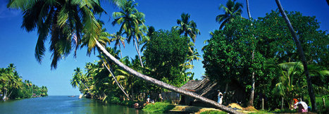 Kerala Holiday Packages,Kerala Tour Packages,Kerala Honeymoon Packages,Your Kerala Holidays,Kerala backwater holidays | your kerala holidays | Scoop.it