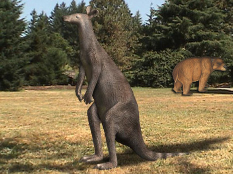 Fossil Teeth Reveal Diet of Extinct Australian Marsupials | Biosciencia News | Scoop.it
