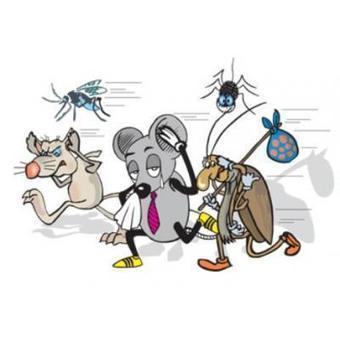 شركة رش مبيدات بالرياض و بالخرج 0503106686 ركن نجد | 056788709 شركة تنظيف بالرياض | Scoop.it