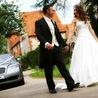 Wedding planner in brampton