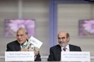 FAO Media Centre: Increased productivity and a more sustainable food system will improve global food security | The world goes round | Scoop.it