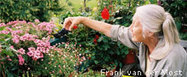 "Organic Gardening - National Wildlife Federation (""learn some tips in managing your organic garden"") 