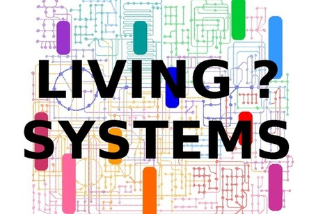 Are organizations really living systems ?   mobility solutions & connected cities   Scoop.it