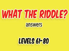 What the Riddle Answers Level 61 to 80 | Game solver | Scoop.it