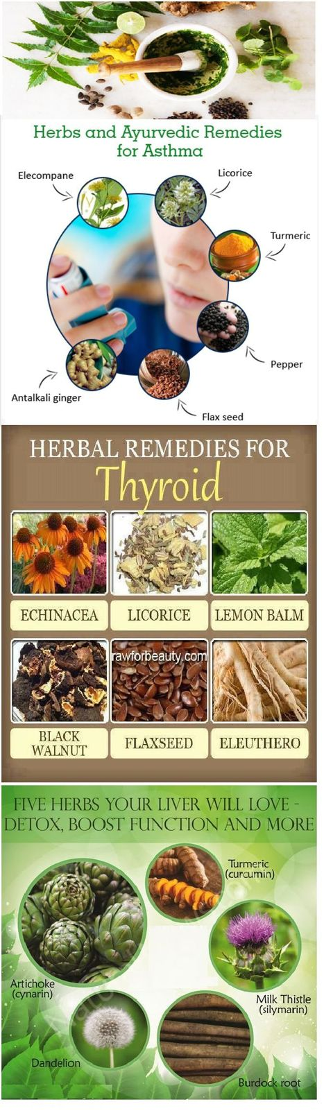 Ayurvedic Herbal Products and Remedies | Health & Digital Techn Magazine - 2016 | Scoop.it