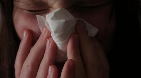 Allergies : la saison 2012 est la plus grave jamais connue (et le pire est à venir)   Toxique, soyons vigilant !   Scoop.it